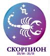 Скорпион солнечный знак