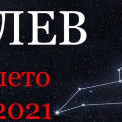 Лев гороскоп 2021 лето