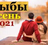 Рыбы гороскоп на сентябрь, октябрь, ноябрь и декабрь 2021