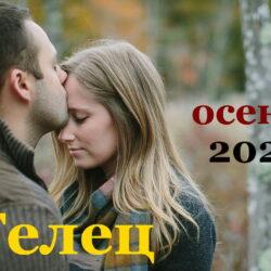 Телец гороскоп на сентябрь, октябрь, ноябрь и декабрь 2021